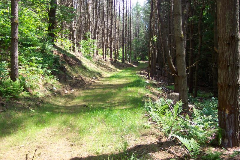 New Recreational Trail